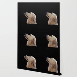 Man's Best Friend - Labrador Dog Portrait Wallpaper