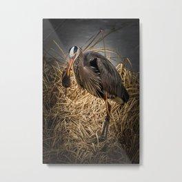 Heron and the mole Metal Print