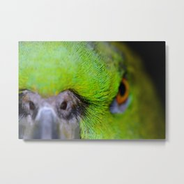 """Back Off"" Yellow-Naped Amazon Parrot Metal Print"
