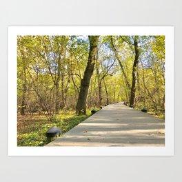 The Natural Path Art Print