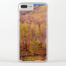 Deciduous beech forest view in spring, forest landscape Clear iPhone Case