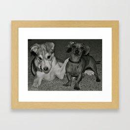 You's Alright  Framed Art Print