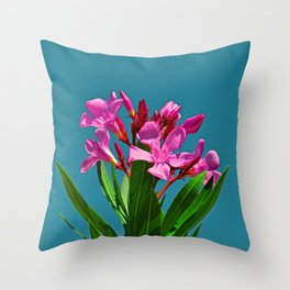 Pretty in pink under turquoise sky Throw Pillow