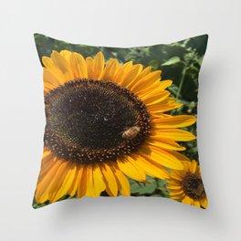 Sunflower and Honeybee Throw Pillow