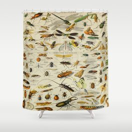 Insects Vintage Scientific Illustration French Language Encyclopedia Lithographs Educational Shower Curtain