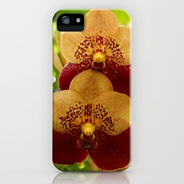 Joy And Happyness iPhone Case
