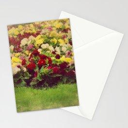 Vintage Pretty Flowers Stationery Cards