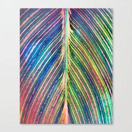 503 - Canna Leaf Abstract Canvas Print