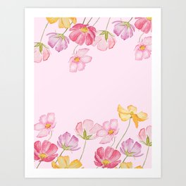 colorful cosmos flwoer in pink background Art Print