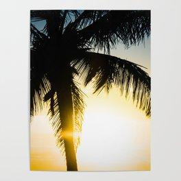 Palm Beach Gold Poster