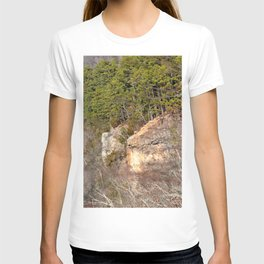 Climbing Up Sparrowhawk Mountain above the Illinois River, No. 3 of 8 T-shirt