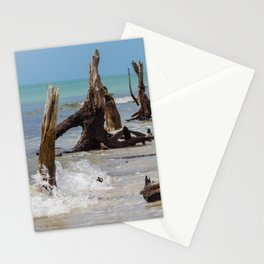 Weathered Mangroves Stationery Cards