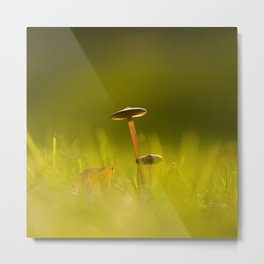 Small Mushrooms on Grass Autumn Scene #decor #society6 #buyart Metal Print