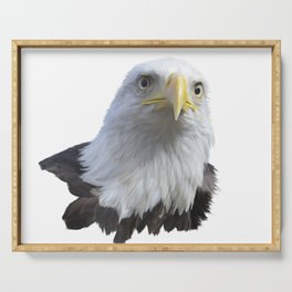 Portrait of Bald eagle isolated on white background Serving Tray