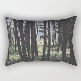 Where you'll find them. Rectangular Pillow