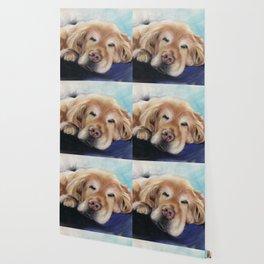 Sweet Sleeping Golden Retriever Puppy by annmariescreations Wallpaper