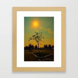 Sunlust  Framed Art Print