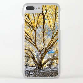 Gorgeous Big Tree Clear iPhone Case
