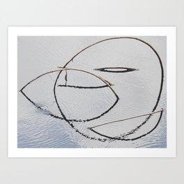 Six Mile Cypress Slough Reserve Art Print