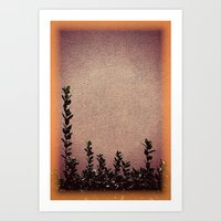 Heights Art Print