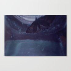 Moth-54 Canvas Print