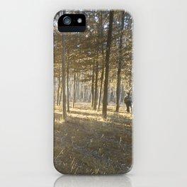 Falling, Rising, Shining Through iPhone Case