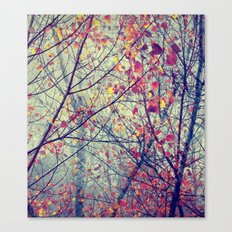 trees misty morning Canvas Print