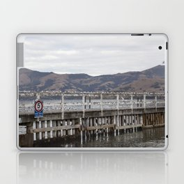 Slow Terns of Akaroa Laptop & iPad Skin