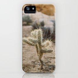 Joshua Tree National Park XVI iPhone Case