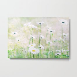 Margeritenwiese Metal Print