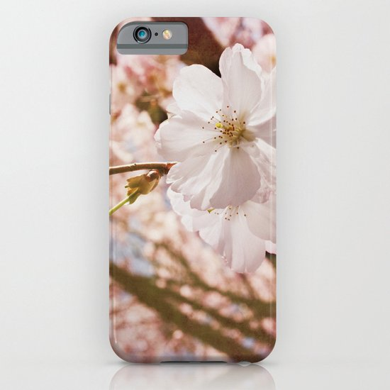 To bear Fruit iPhone & iPod Case