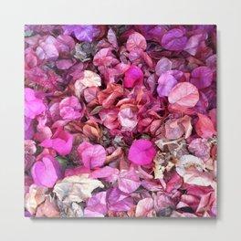 Pink Bougainvillea Metal Print