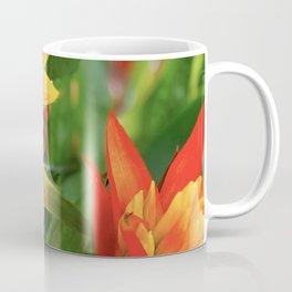 Exotic Red and Yellow Tropical Hawaiian Flowers Coffee Mug