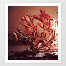 The WindBroken Ones Art Print