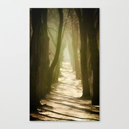 Lost Alley Canvas Print