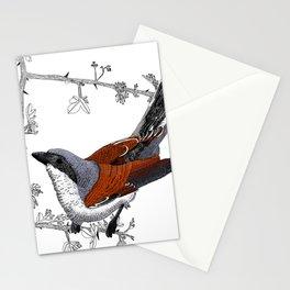 Red-Backed Shrike Stationery Cards