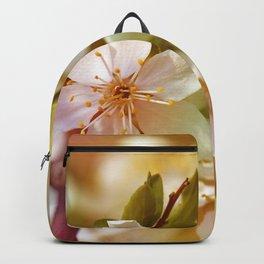Spring 0117 Backpack