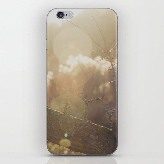 garden sunburst... iPhone & iPod Skin