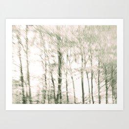 Windy Woods Art Print
