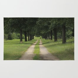 Covered Road with Tree's Rug