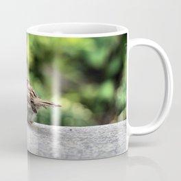Little Feather Tasting Coffee Mug