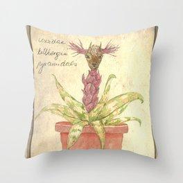 Planimarium - crevidea billbergia pyramidalis Throw Pillow