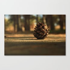 While I Was Walking Canvas Print