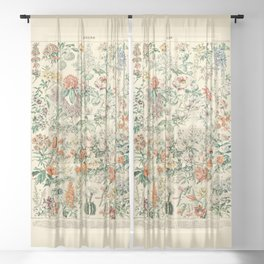 Wildflowers and Roses // Fleurs III by Adolphe Millot 19th Century Science Textbook Artwork Sheer Curtain