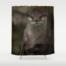 Curious Otter Shower Curtain