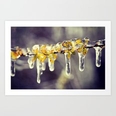 Freezing Rain Art Print