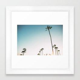 Santa Monica Palms Framed Art Print