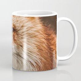 American Red Fox Coffee Mug