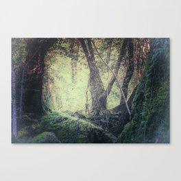 "Fairy-tale wood"" Canvas Print"