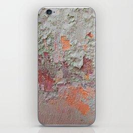 017 iPhone Skin